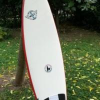 6'5 shortboard gemini