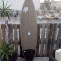 shortboard gemini 6'